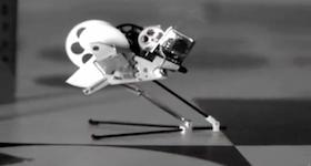 Bio-inspired Flying Robots bySabine Hauert, EPFL