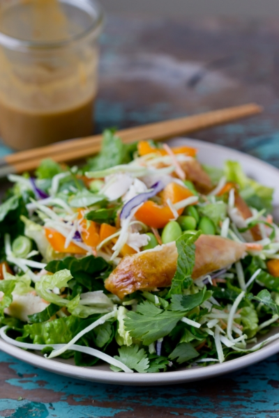 15 MINUTE ASIAN CHICKEN SALAD