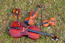 String Quartet  $580 for the first hour, $280 for each subsequent hour
