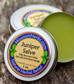 "Juniper Salve - Historical uses: skin cancer lesions, chest colds, and breast massage. Juniper infused oil ""contains anti-tumor oils, dissolves trouble-some lumps, and repairs abnormal cells."" The University of Missouri-Columbia found compounds in the tree that fight and kill skin cancer cells in mice. *Not intended to prescribe or cure.  1 oz. - $7.   2 oz. - $12."