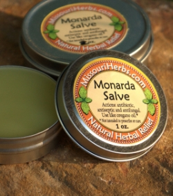 Monarda Salve - Historical uses: minor wounds, fungal skin infections, sprains, bruises, burns, and rashes.* *Not intended to prescribe or cure.  1 oz. - $7.   2 oz. - $12.