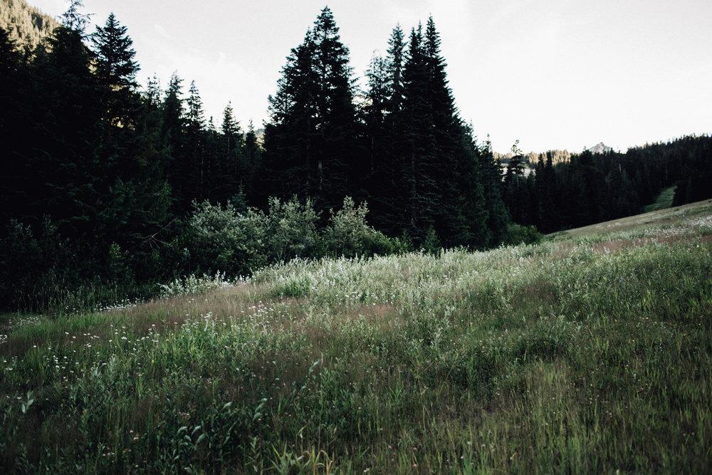 DannieMelissaWit_abeillephotography.com_eckhart-8034.jpg
