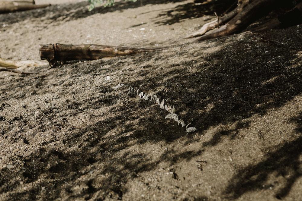 DannieMelissaWit_abeillephotography.com-2332.jpg