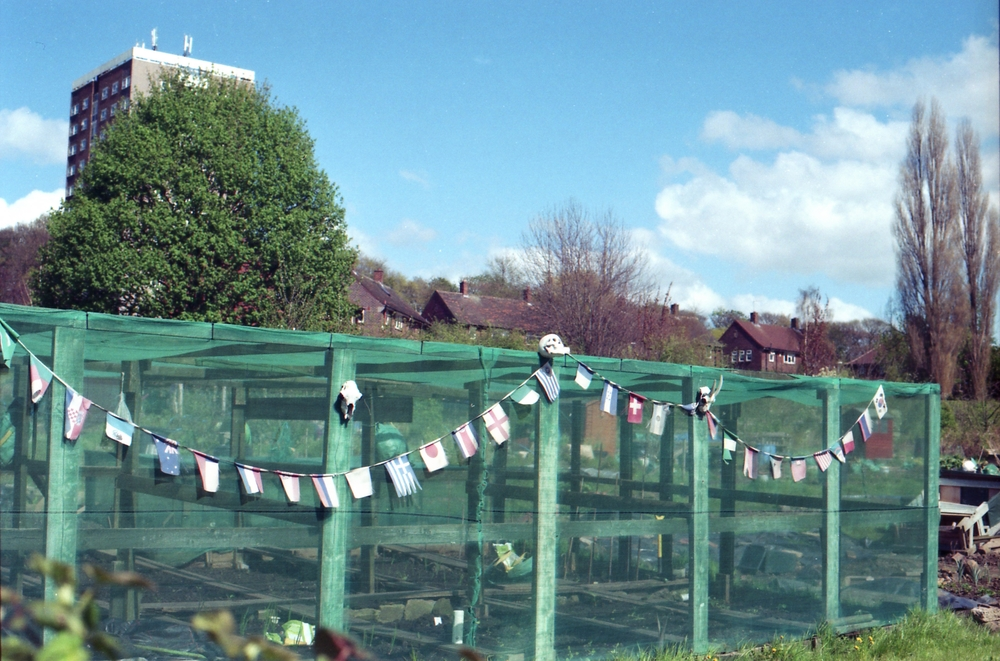 Day 123 - An allotment near the train station.