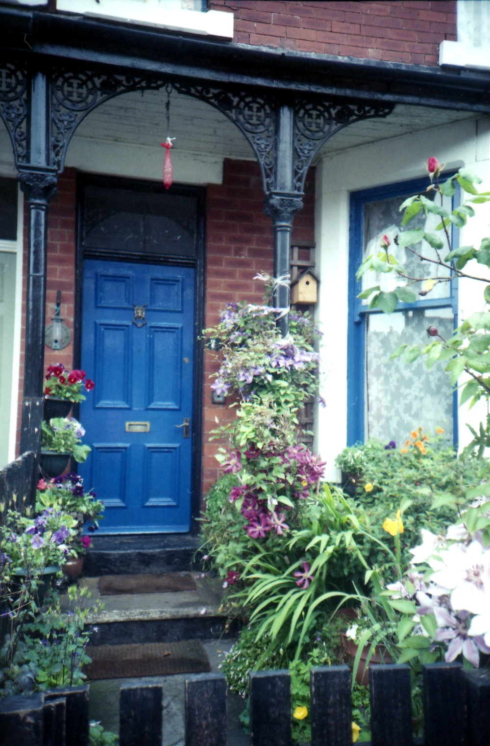 163/366 - When we buy a house I want to paint the front door a lovely colour and have flowers everywhere. House goals!