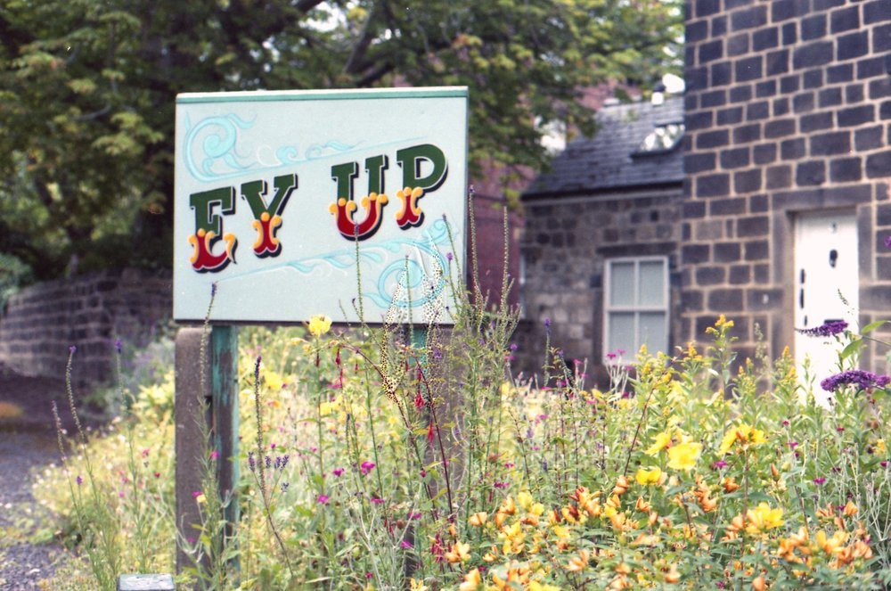 206/366 - Not sure which bit I love more ALL the yellow flowers (my fave) or the Hey Up sign. Overall its a keeper :)