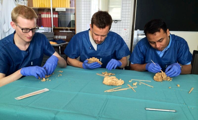 Dr. Aung Thu Soe Minh with his Swiss colleagues during practical exercises on plastified models