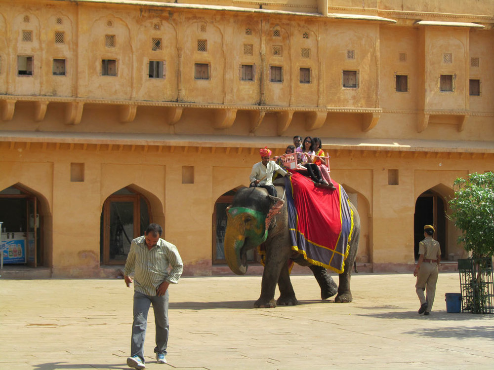 Amber Fort, Jaipur Photo credit: Rustom Katrak