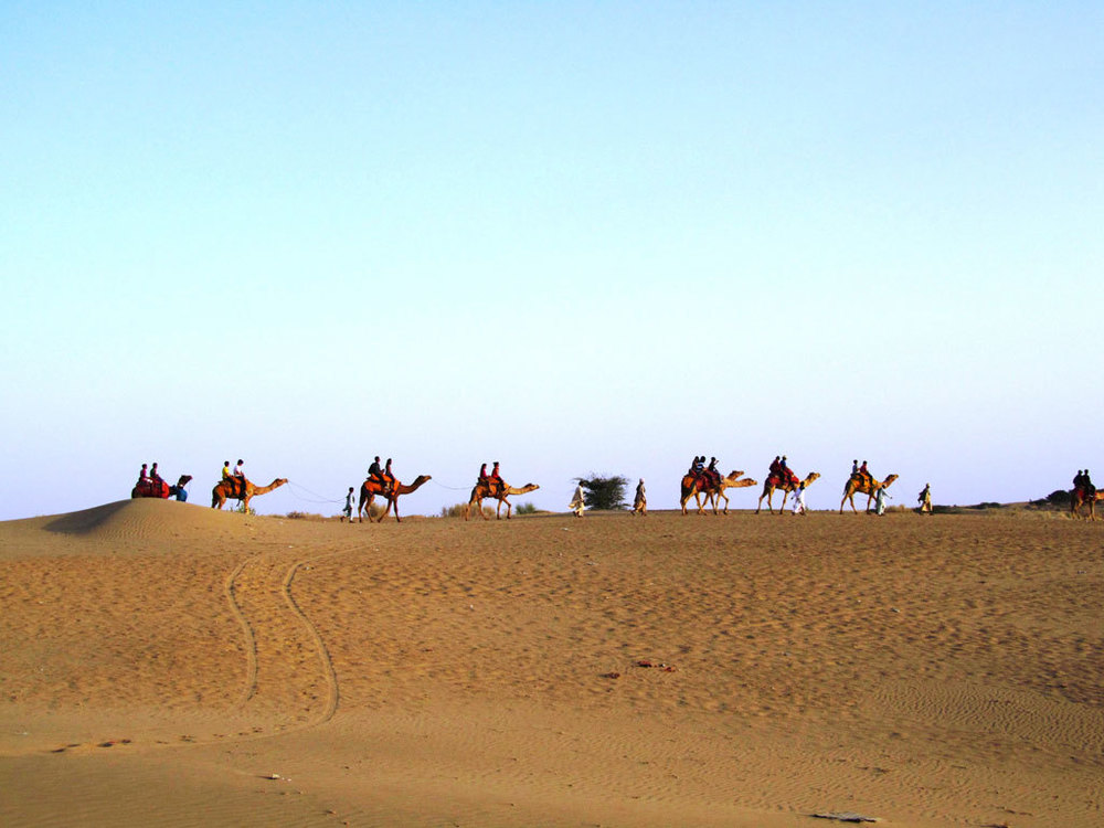 Jaisalmer camel safari Photo credit: Rustom Katrak
