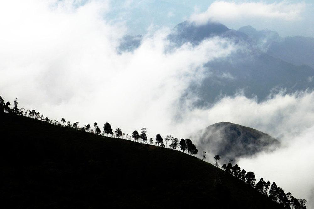 Kodaikanal Photo credit: Gopal Vijayaraghavan
