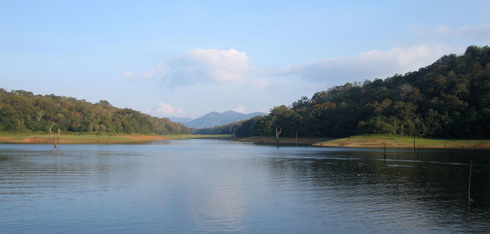 Periyar National Park, Thekkady   Photo credit:   Mikko Koponen
