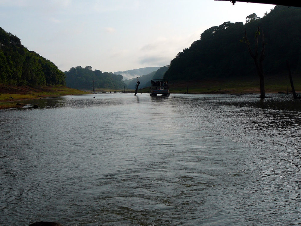 Periyar National Park, Thekkady   Photo credit:   Appaiah