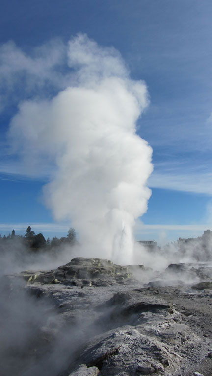 Te Puia, Rotorua Photo credit:  Robert Linsdell