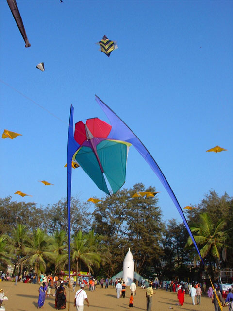 The Desert Kite Festival Photo credit: Jose Sainz