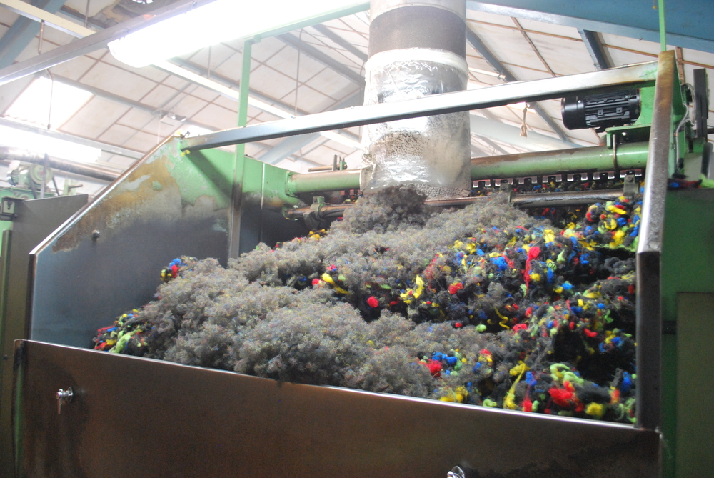 The mixed wool being fed into the carding machines.