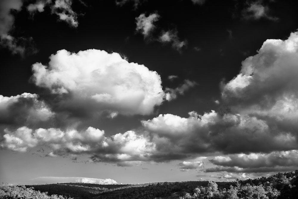 ©Piotrek Ziolkowski, View from Darlington Estate.