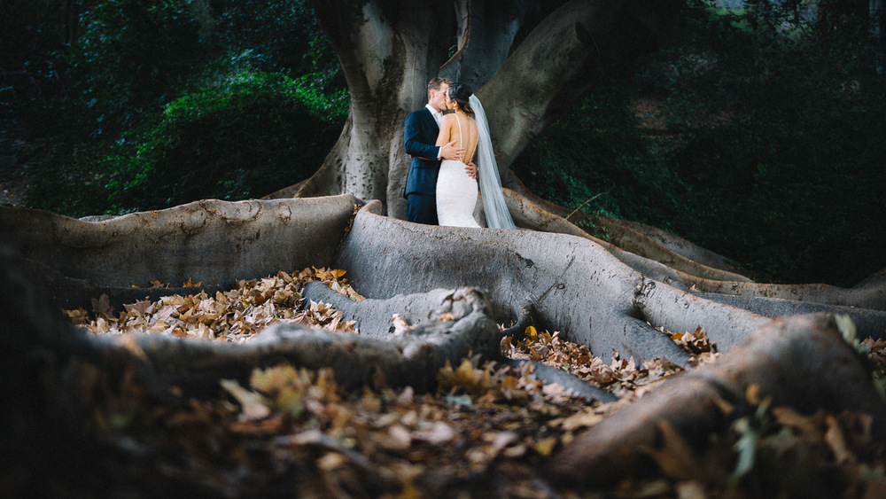 Jo and Oliver / Lamont's Bishops House Wedding by Piotrek Ziolkowski
