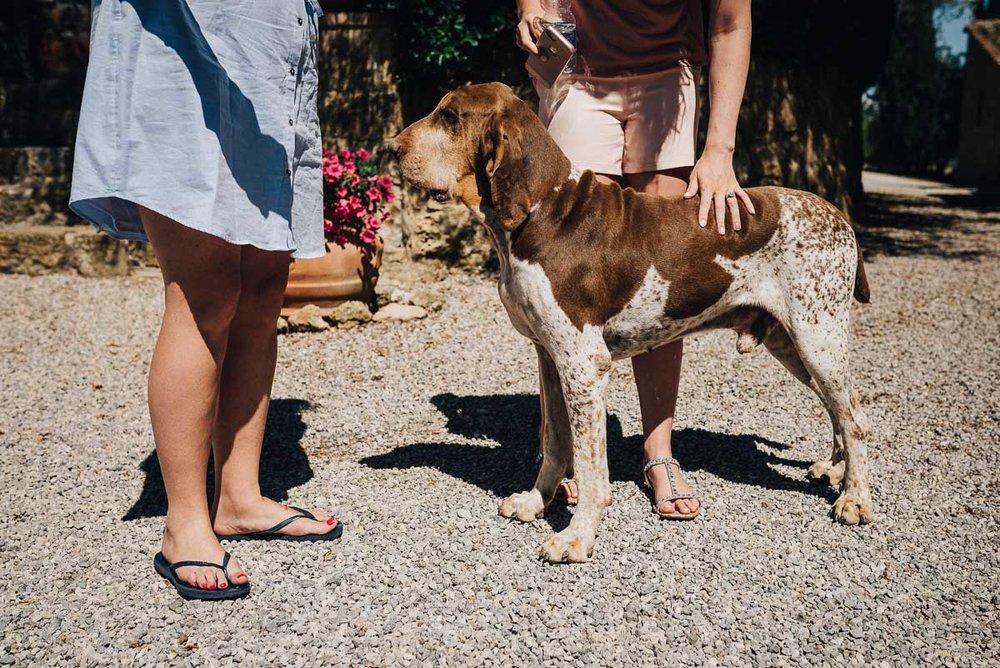 Tuscany Wedding Photographer / Pienza