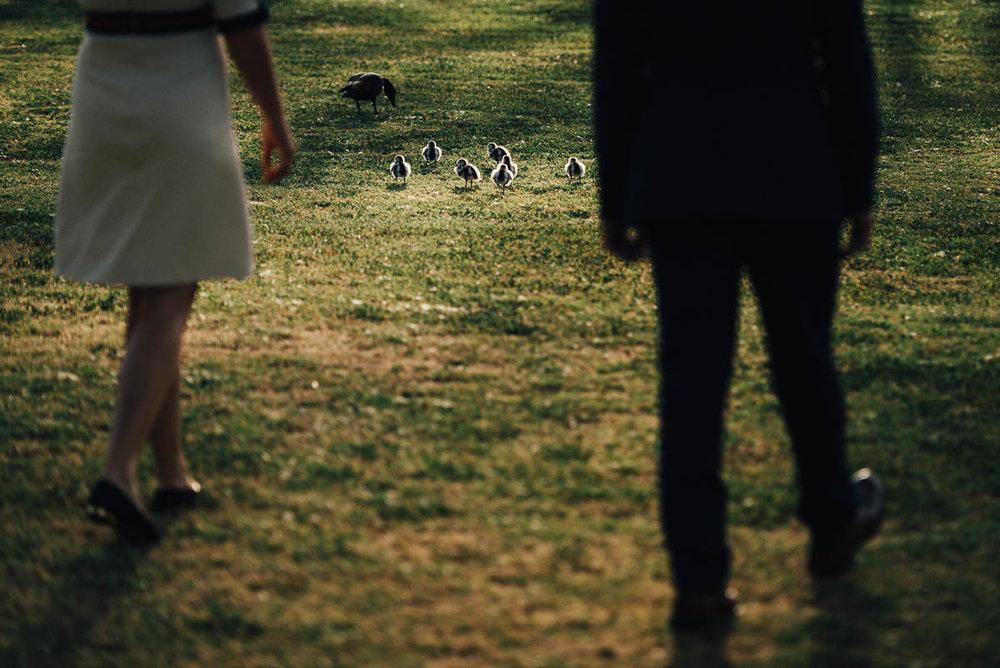 Fremantle Backyard Wedding
