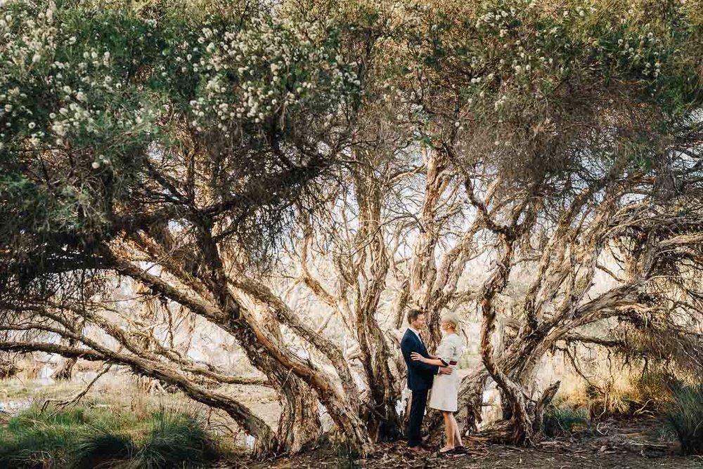 fremantle-backyard-wedding-69.jpg