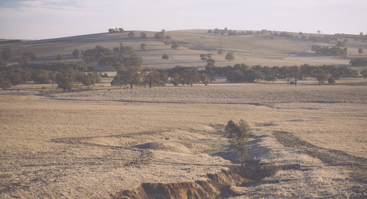 Gingin Farmland