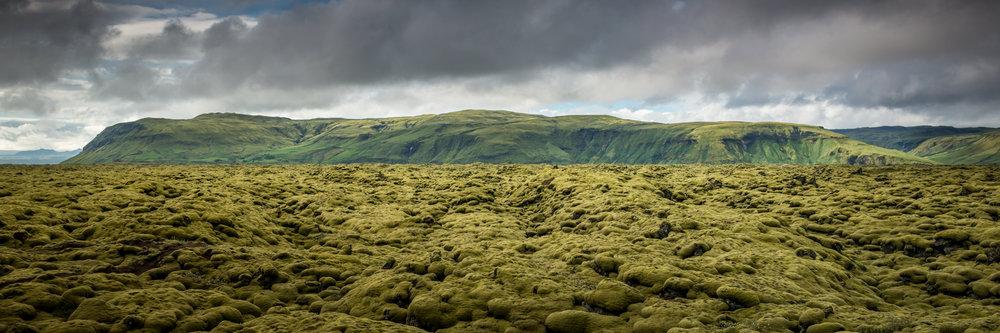 Moss Mountain_2a.jpg