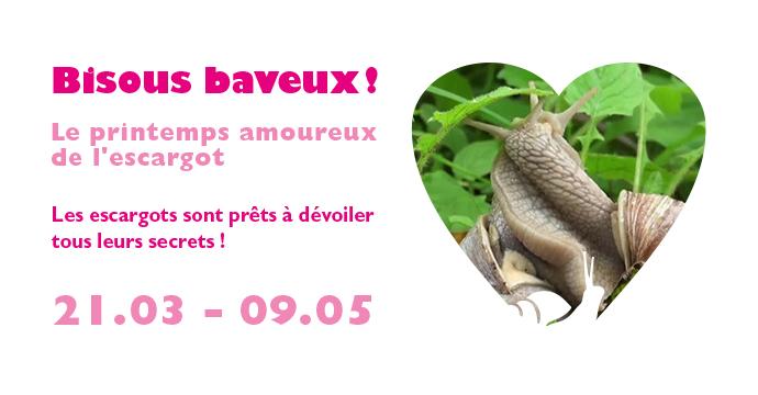 Slide show_bisous baveux_690px-360px-72dpi.jpg