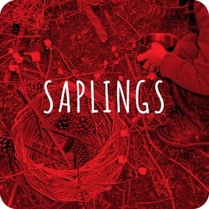 Saplings.jpg