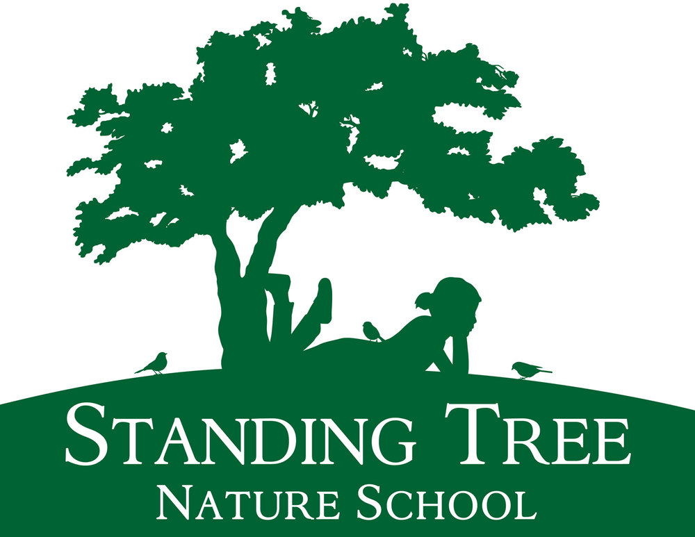 Graphic Design for Standing Tree Nature School