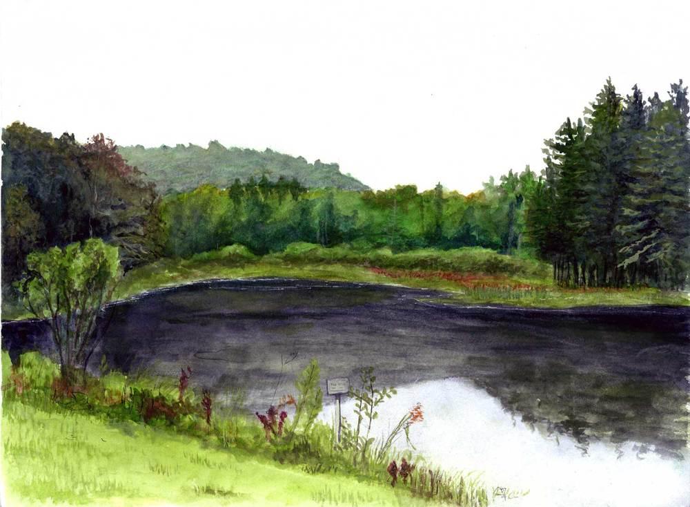 Lincoln Pond, Hyuck Preserve