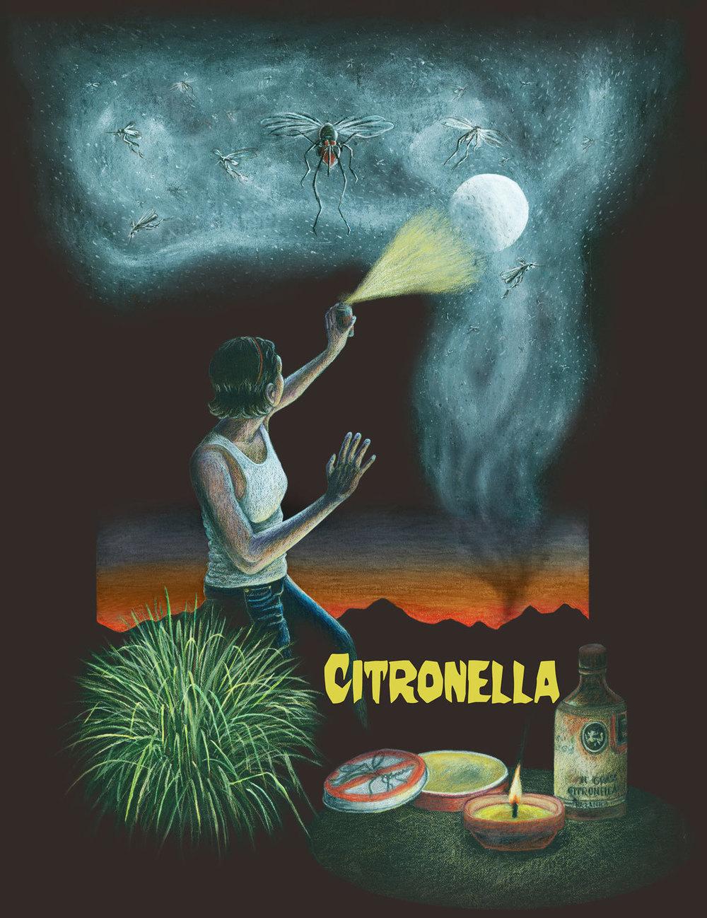 Citronella3-0.jpg