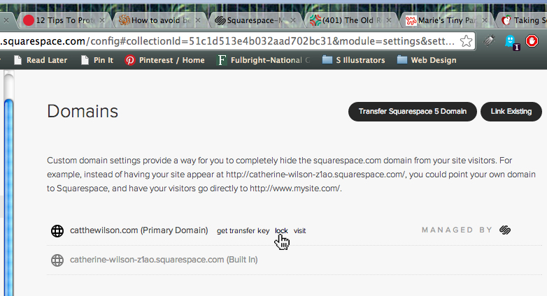 Fortunately, my website and blog built with Squarespace has domain privacy I just need to make sure my domain is locked.