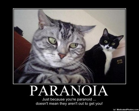 From motivatedphotos.com Seriously. Thanks for lightening the mood lol cats.