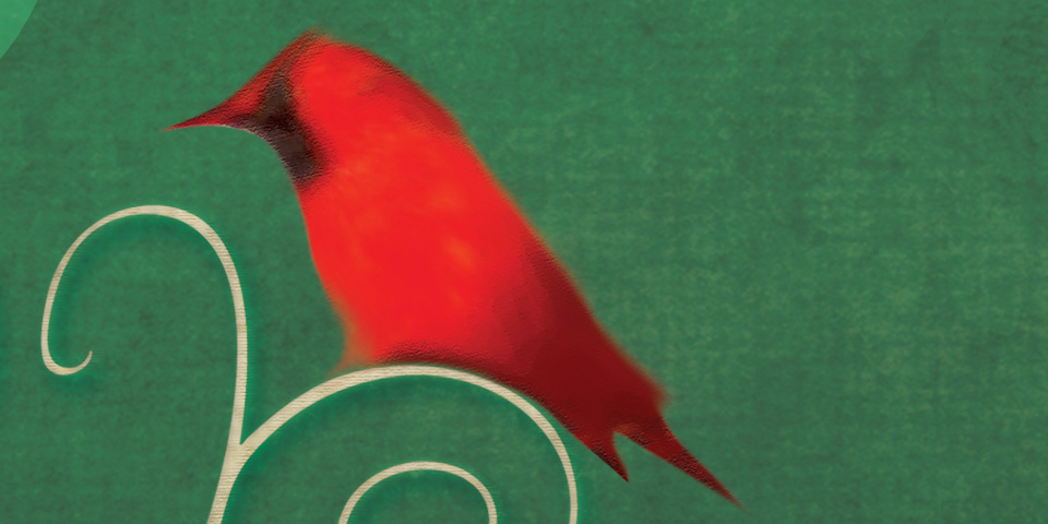 Birders_detail2.jpg