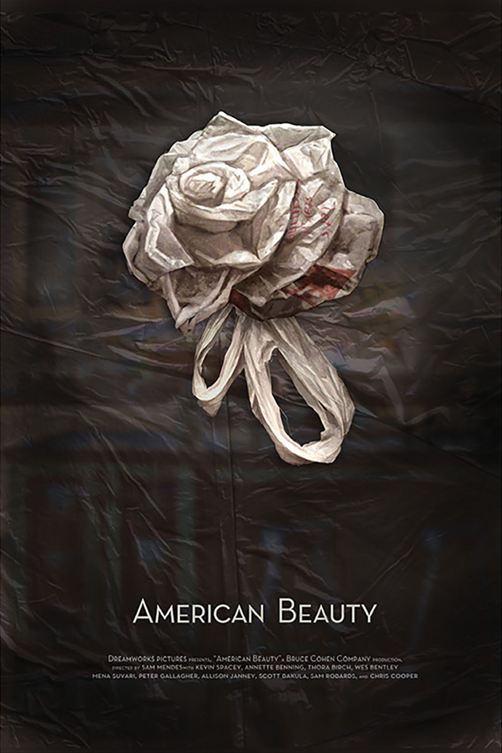 American Beauty by Stephanie Toole