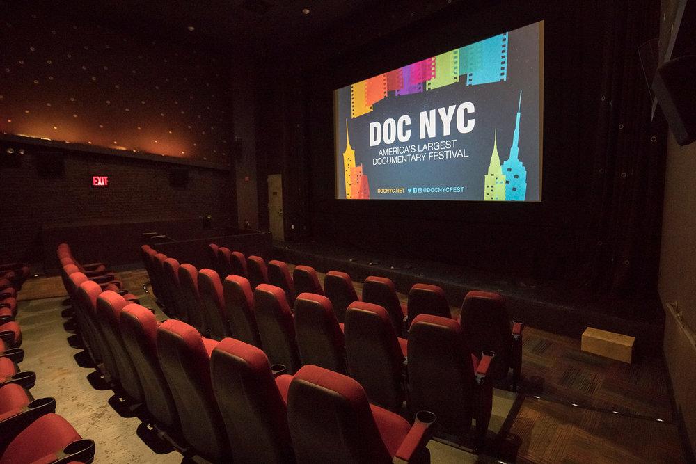 DOCNYC_2017_theatrescreen.jpg