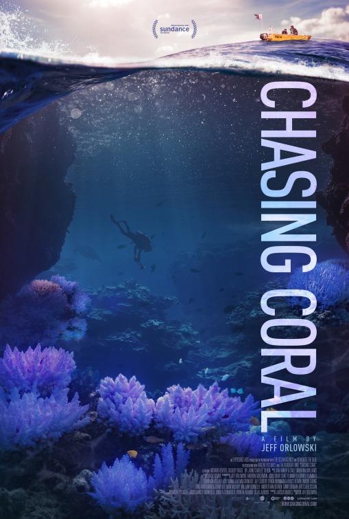 chasing_coral.jpg