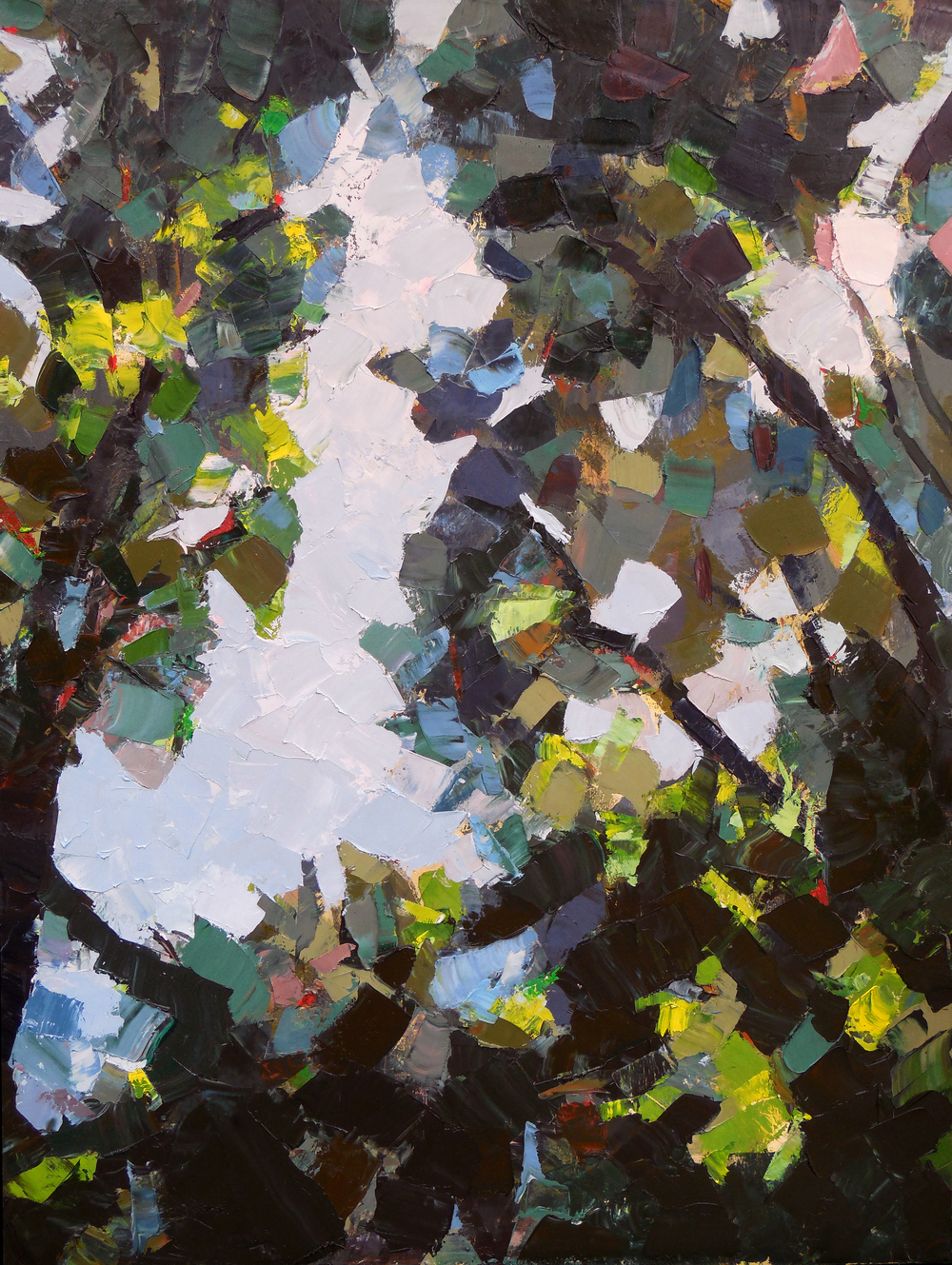 "Ravine,  2013 Oil, 48"" x 36"" Available"