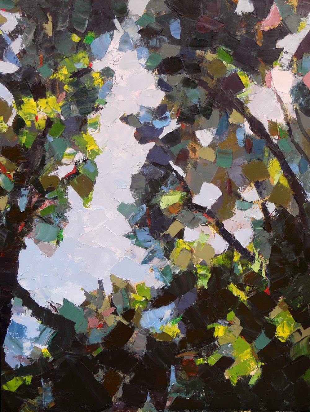 """Ravine,  2013 Oil, 48"""" x 36"""""""