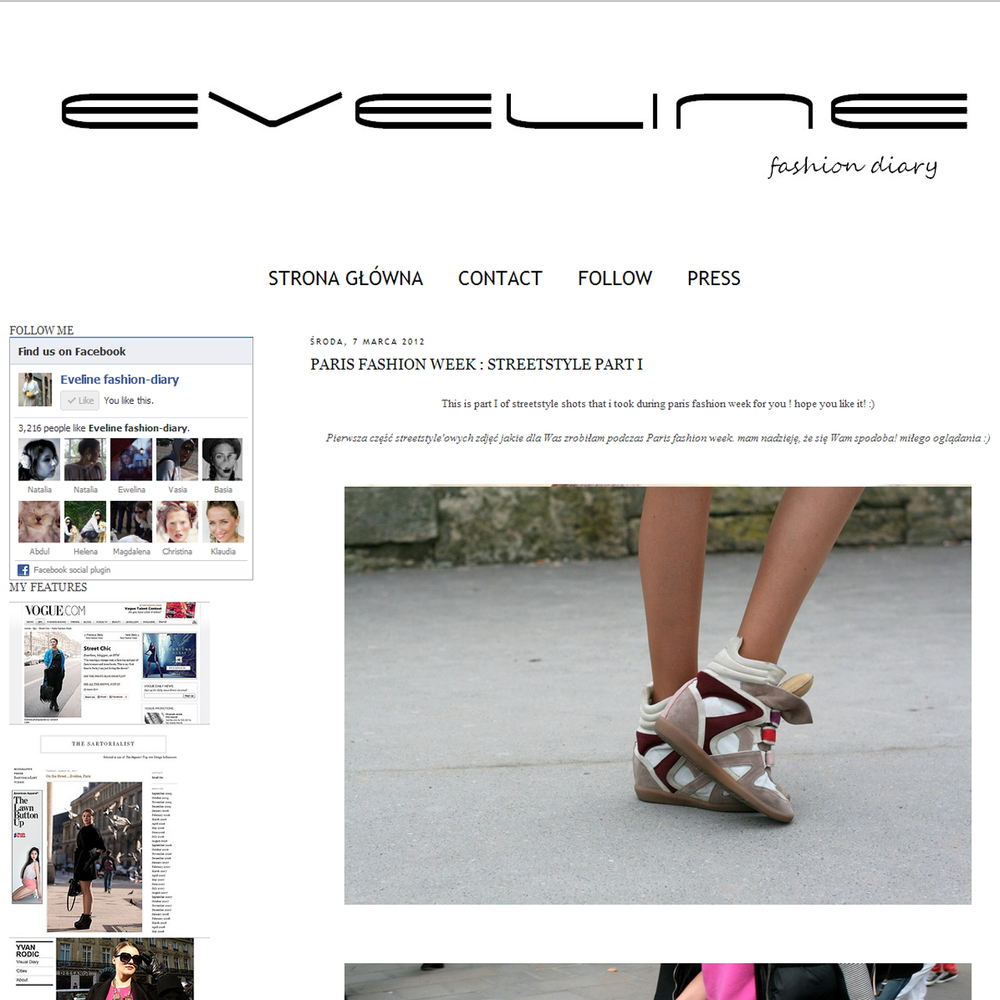 evelin fashion diary.jpg