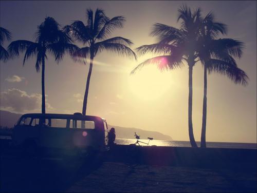 hawaiiweb-1024x769.jpg