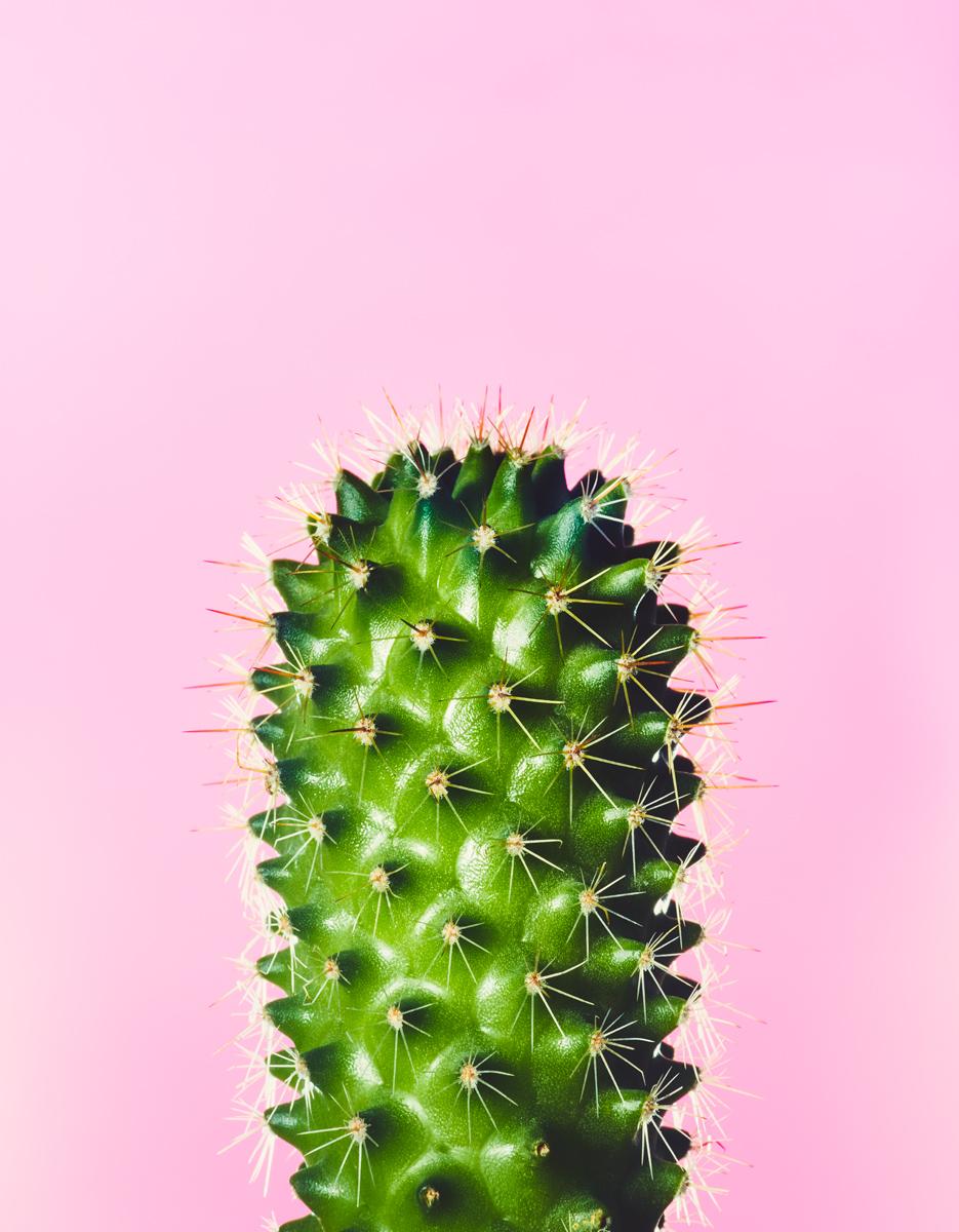 14_Botany.jpg