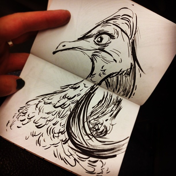 I'm back in #pdx! Here's one more #silly #sketch from my #flight, done in a little #sketchbook that @laikahouse gave me at #ctnx ! #Cassowary #bird #animal #ctn #ctn2013 #ctnexpo #illustration #art #ink #drawing #draw #portland #chillinonthemax
