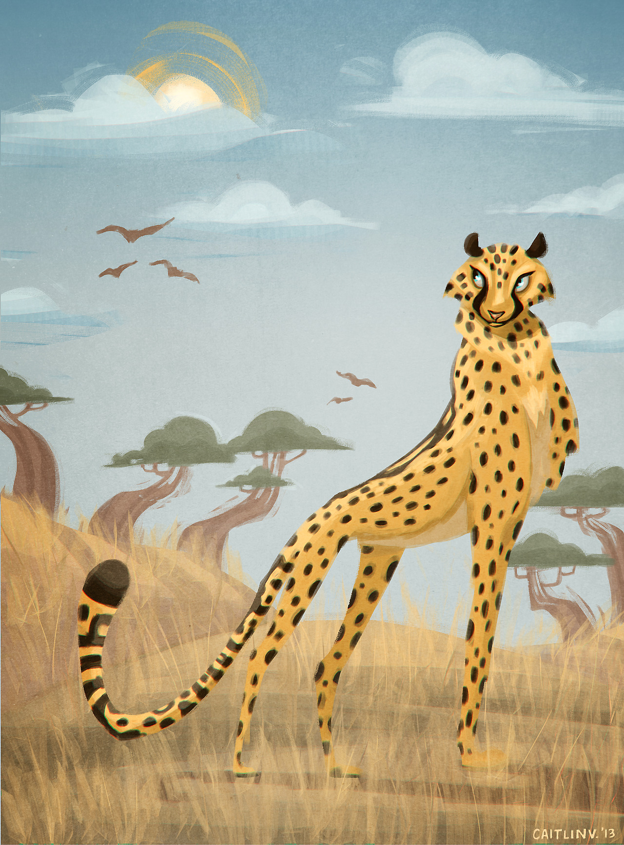hark! a cheetah!