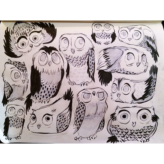 Sooo I recovered from the flu only to be hit with a throat infection and another fever. Tea and honey is now my only major food group. On a lighter note, I drew a bunch of owls last night. #draw #drawing #sketch #sketchbook #ink #pentel #illustration #art #doodle #owl #owls #cute #animals #sick #portland #pdx