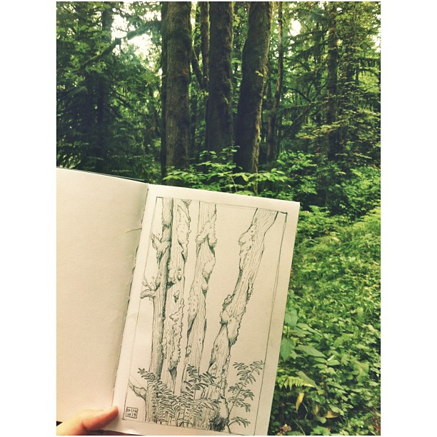 Went #nature #sketching today with @tandykunkle ! #sketch #sketchbook #draw #drawing #illustration #art #forest #landscape #environment #design #trees #oregon #portland #pdx #soap