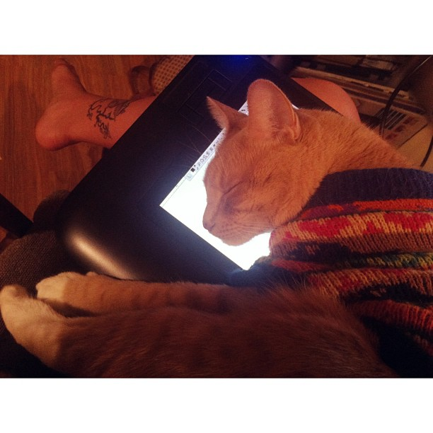 Trying to draw on my tablet, but someone decided my lap + the warm screen was the perfect bed. #floyd #flavio #cute #adorable #cat #sleepy #kitten #drawing #draw #wacom #tablet #kitty #catinasweater #sweater #sackonapipe #dontaskquestions
