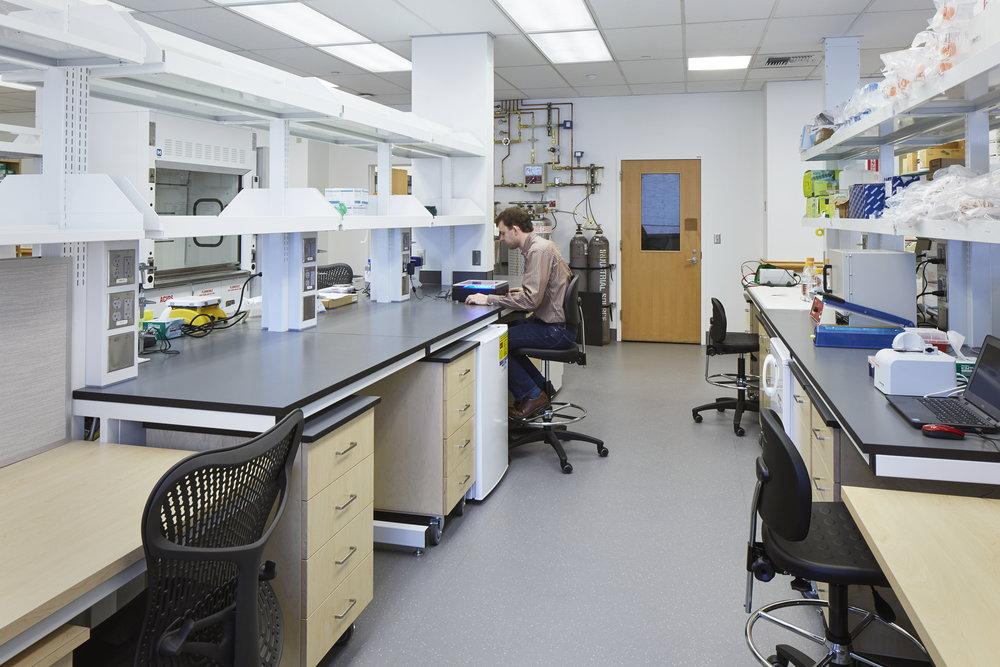 OHSU Freeman Lab Renovation