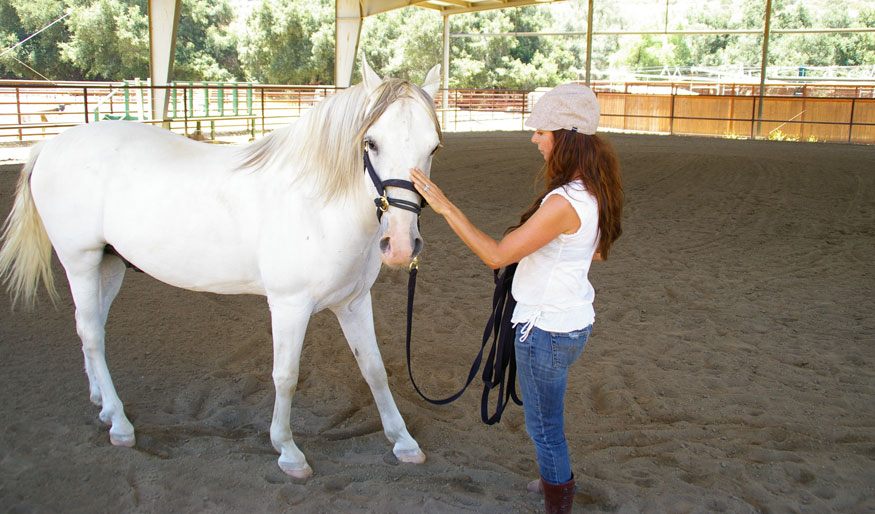 """""""One of the most eye-opening and profound experiences in my life. What horses can teach you is beyond words...it's an opportunity I hope everyone can experience in their lifetime.""""  – Lisa Desantis Kirchmer, artist and business owner"""