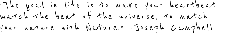 JCampbell-quote.png